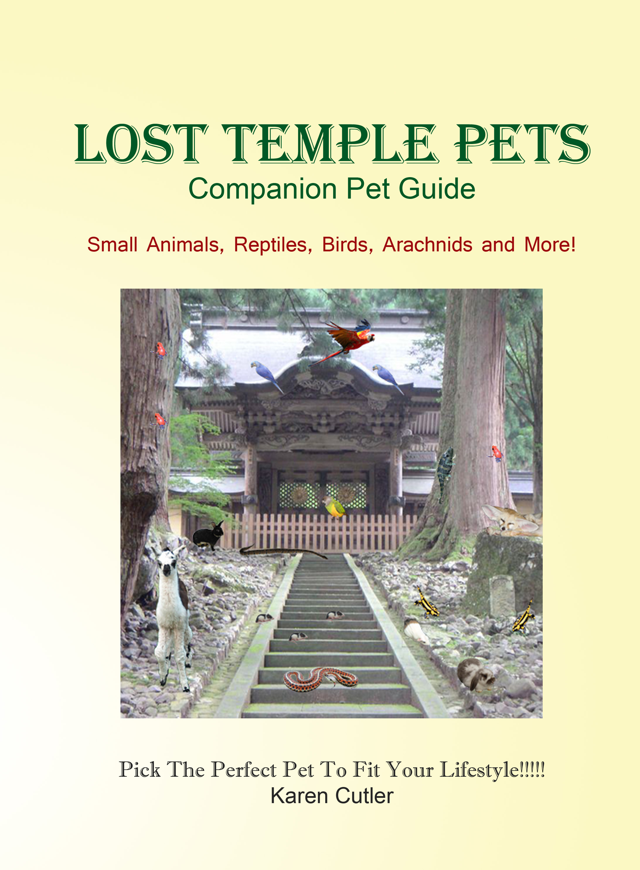 lost temple pets small animal book